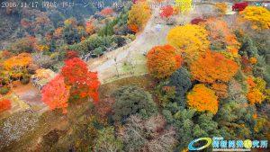紅葉に包まれた 天空の城 岡城 -大分県-  20161117 vol.11 Aerial in drone the Oka castle/Okajou 4K Photo
