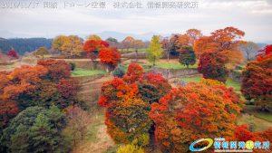 紅葉に包まれた 天空の城 岡城 -大分県-20161117 vol.5 Aerial in drone the Oka castle/Okajou 4K Photo