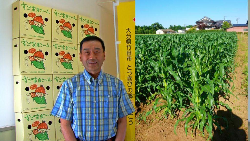 九州一のトウモロコシ!とうきびの郷すごうからのメッセージビデオ 2018