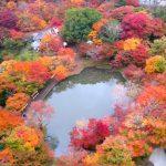 京都や関東に負けない!絶景紅葉スポット九州 2018 紅葉の時期と見ごろの予想 ランキングに乗らない穴場?等